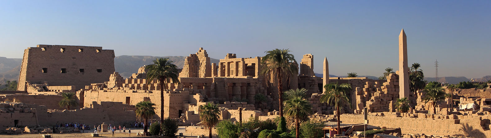 ANCIENT EGYPT & MIDDLE EAST SOCIETY